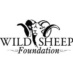 wild-sheep-foundation