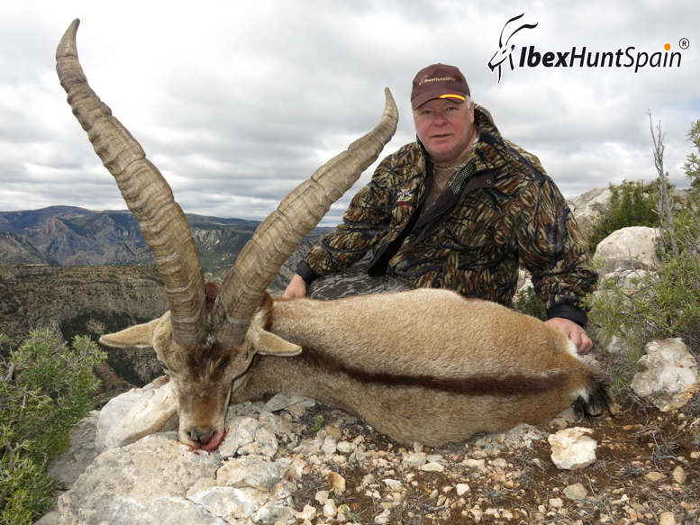 BECEITE_IBEX-IBEX_HUNT_SPAIN-11