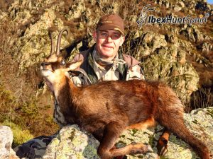 Pyrenean Chamois hunt in Spain