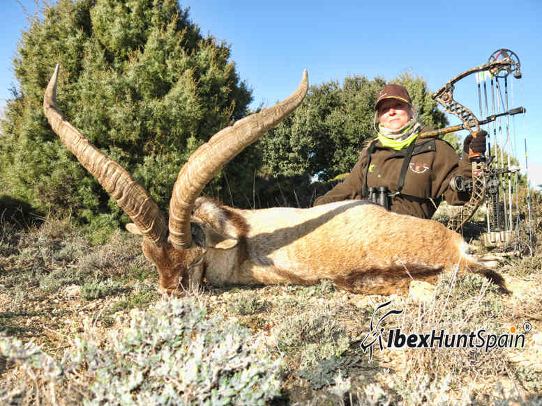 beceite-ibex-9-15
