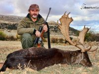 Black Fallow deer hunt in Spain