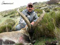 Ronda Ibex, Ronda Ibex hunt, Ronda Ibex Hunting, Ronda Ibex hunt in Spain, HuntiRonda Ibex, Ronda Ibex hunt, Ronda Ibex Hunting, Ronda Ibex hunt in Spain, Hunting Ronda Ibex,