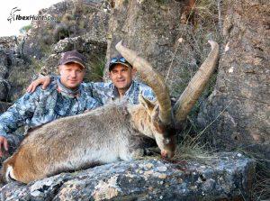 Ronda Ibex, Ronda Ibex hunt, Ronda Ibex Hunting, Ronda Ibex hunt in Spain, Hunting Ronda Ibex,