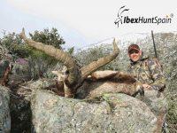 Gredos Ibex, Gredos Ibex hunt, Gredos ibex hunting, Gredos ibex hunting in Spain, Hunting Gredos ibex,